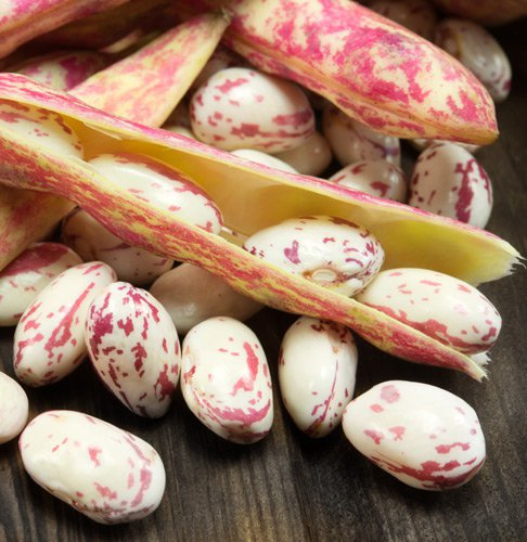 Borlotti beans: 100% Italian, verified supply chain